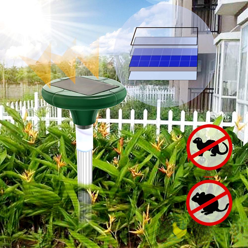Odstraszacz na krety w domowym ogrodzie