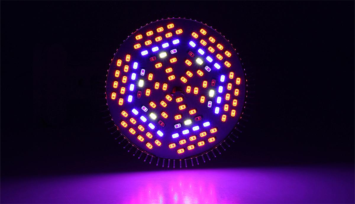 Żarówka LED do roślin od spodu zbliżenie na kolory ledów