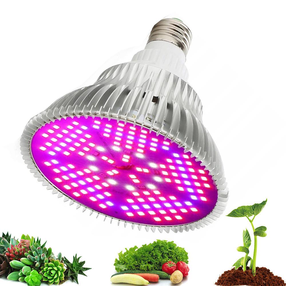 Żarówka LED do roślin włączona nad owocami i warzywami