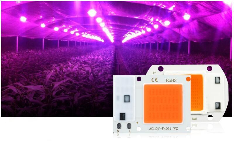 Lampa do roślin LED COB na tle roślin pod foliówką ogrodową