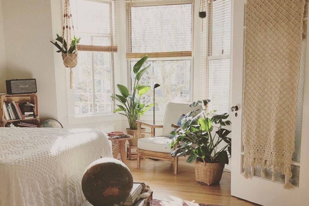 Zielone kwiaty do sypialni